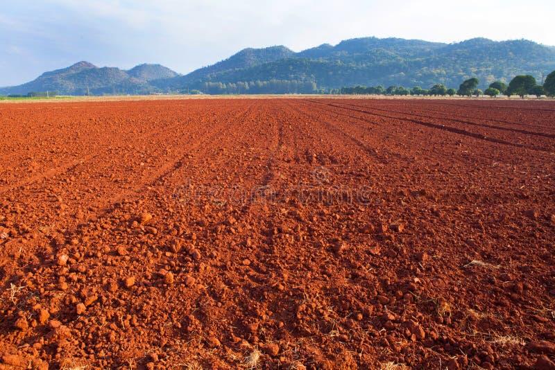 Struttura del suolo della laterite fotografia stock libera da diritti
