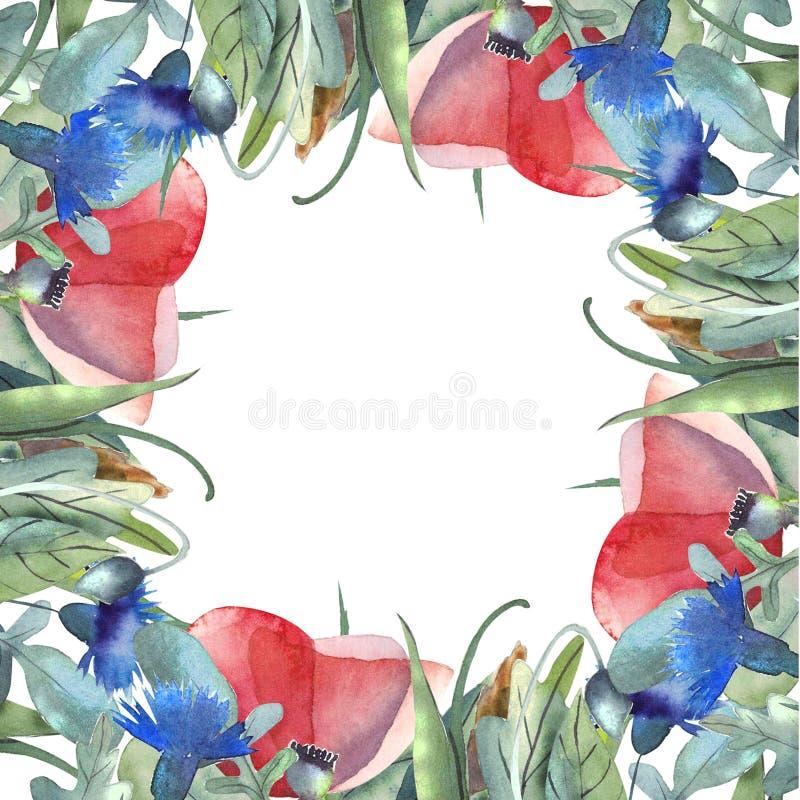 Struttura dell'acquerello delle foglie, erbe, fiori, papaveri, spighette Ruota dentata illustrazione di stock