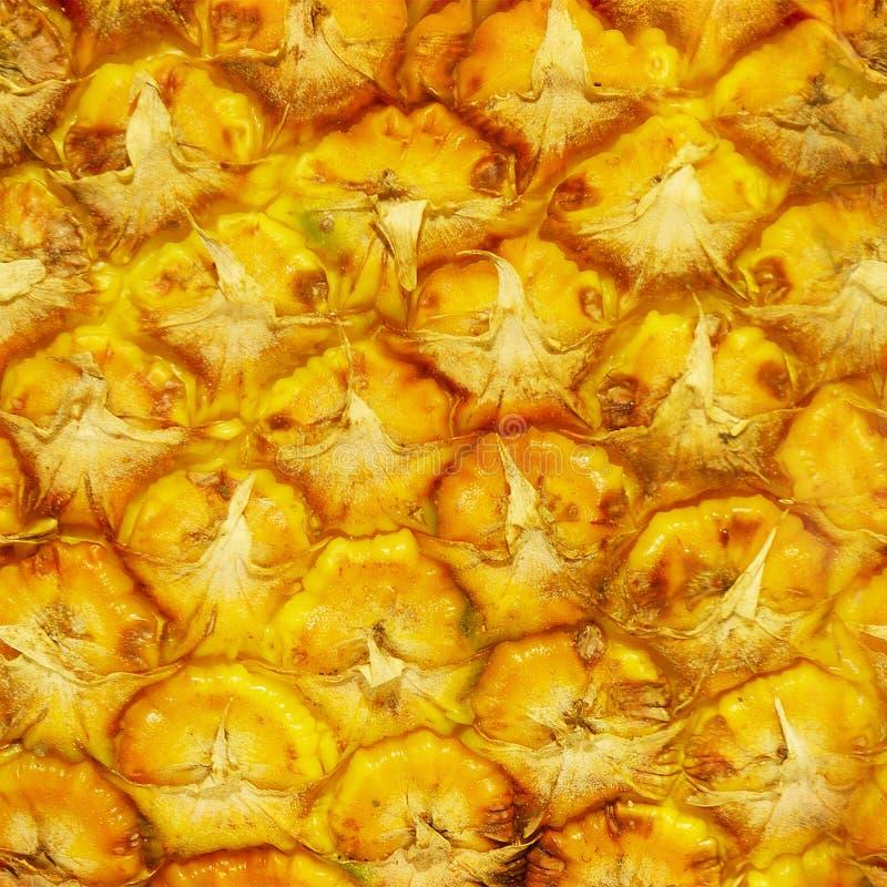 Struttura dell'ananas fotografia stock