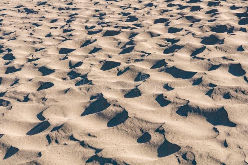Struttura dell'estratto della duna del deserto della spiaggia dell'onda di sabbia fotografia stock