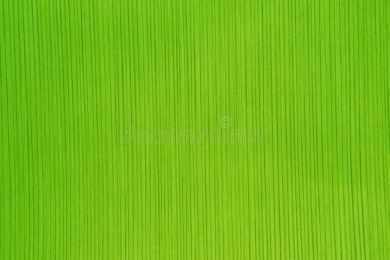 Struttura della carta a strisce nel colore verde intenso immagini stock