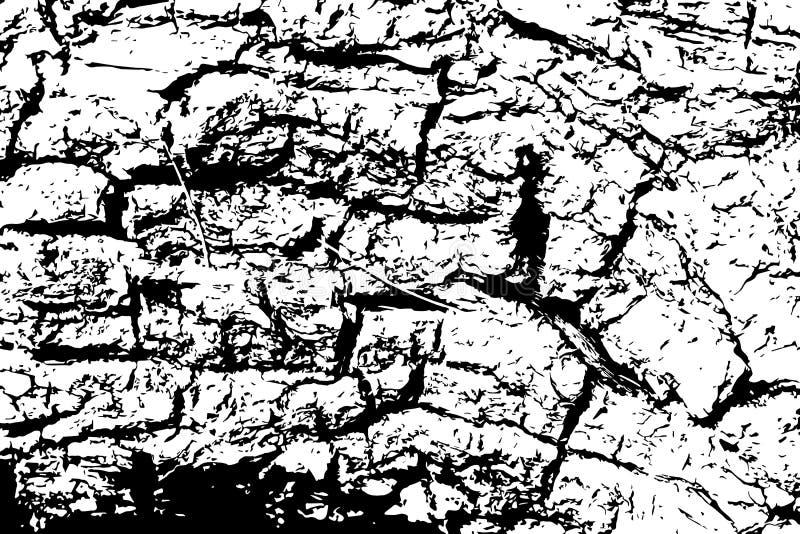 Struttura della corteccia di quercia con le crepe Illustrazione di vettore del legname su fondo trasparente royalty illustrazione gratis