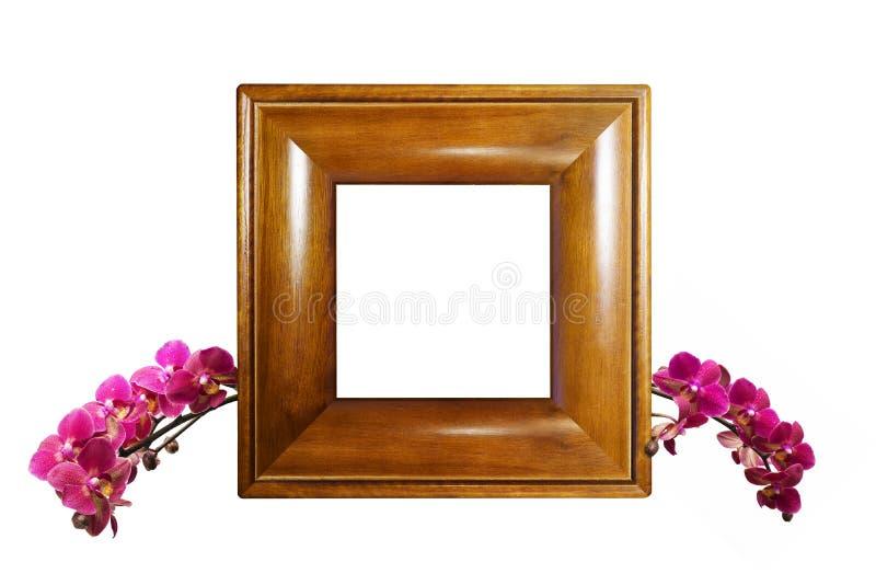 Struttura della foto con il ramo dell'orchidea fotografie stock libere da diritti