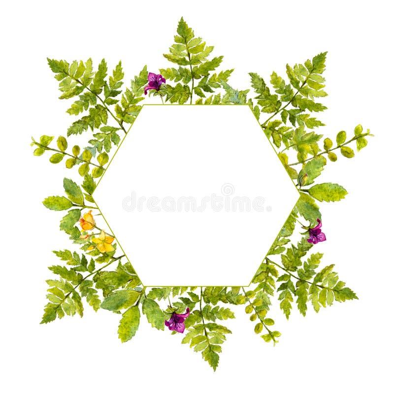 Struttura della geometria con le piante verdi dell for Pianta con la i
