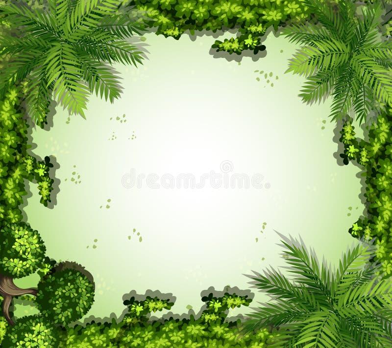 Download Struttura della natura illustrazione vettoriale. Illustrazione di pianta - 55365470