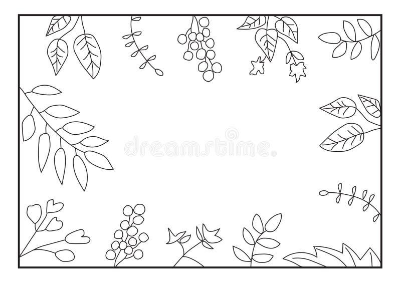 Struttura della natura con le foglie su fondo bianco Blocco per grafici floreale monocromatico fotografia stock libera da diritti