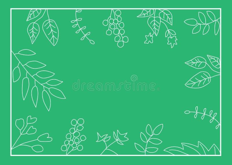 Struttura della natura con le foglie su fondo verde fotografia stock