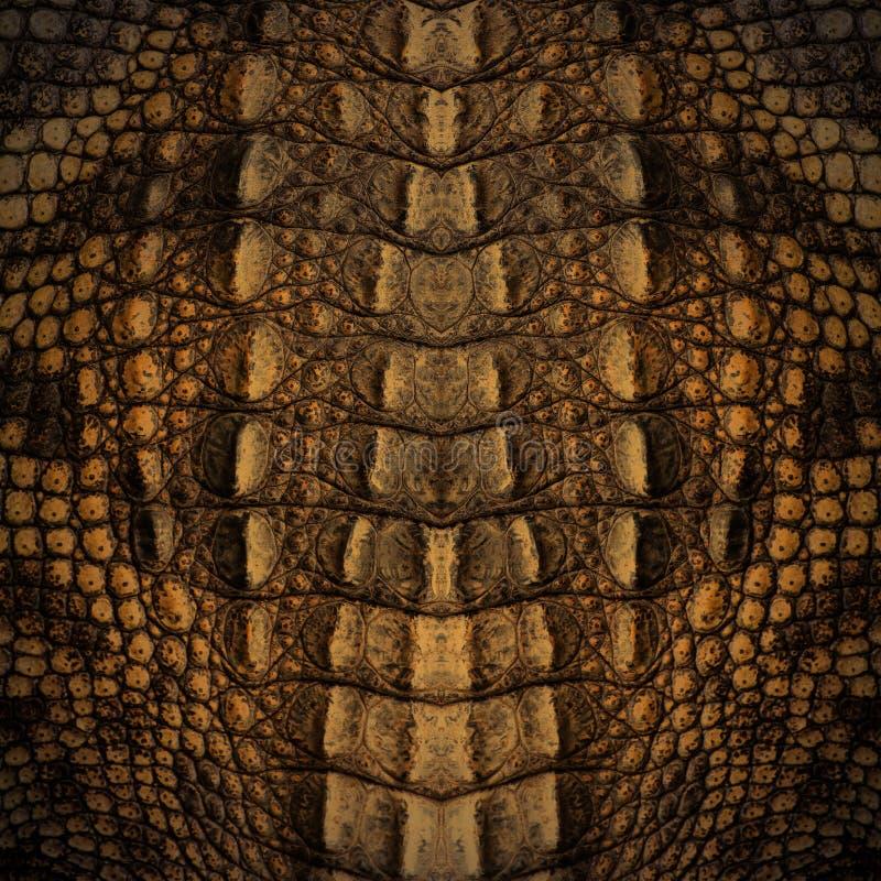 Struttura della pelle del coccodrillo immagini stock