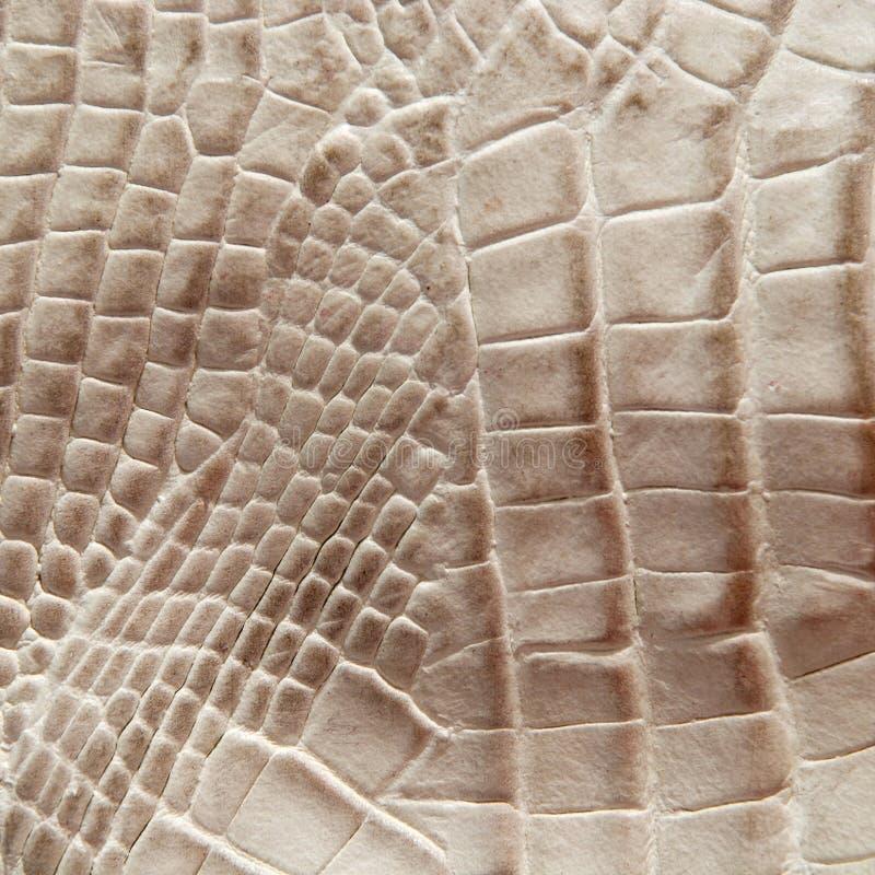 Struttura della pelle del coccodrillo fotografia stock