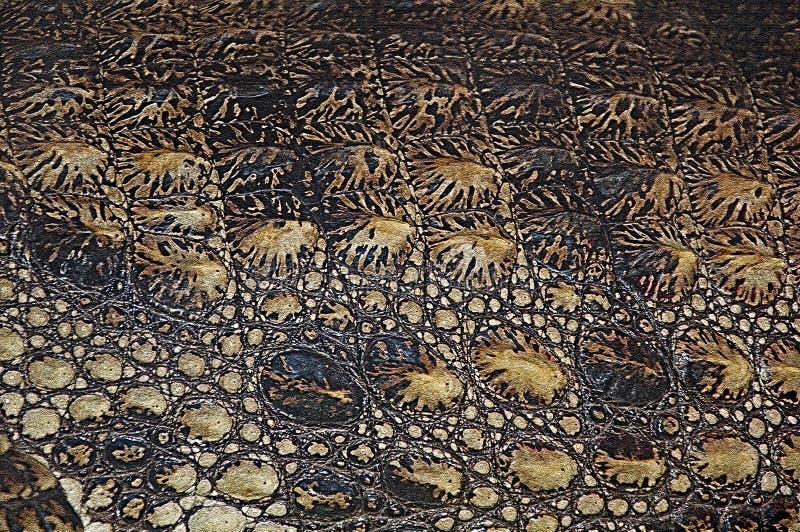 Struttura della pelle del coccodrillo Rettili superiori di struttura di tendenza del fondo immagini stock