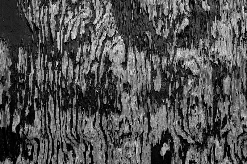 Struttura della pittura della sbucciatura fotografia stock