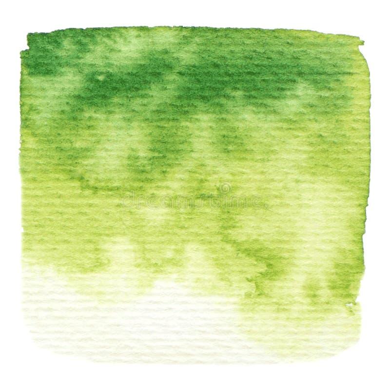 Struttura della pittura di verde di vettore isolata su bianco royalty illustrazione gratis