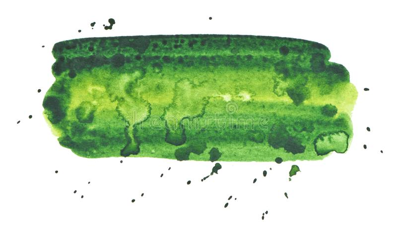 Struttura della pittura di verde di vettore isolata sull'insegna bianco- dell'acquerello illustrazione di stock