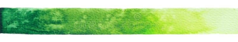 Struttura della pittura di verde di vettore isolata sull'insegna orizzontale dell'acquerello bianco- per la vostra progettazione immagine stock