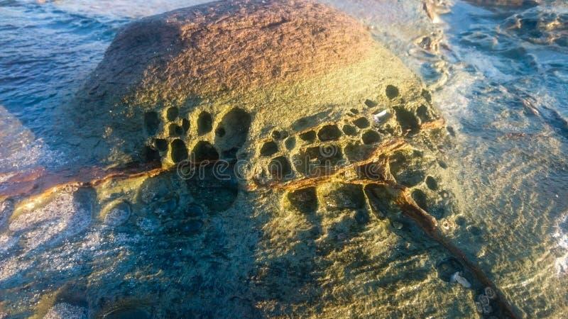 Struttura della roccia di Colorfull nella spiaggia immagine stock