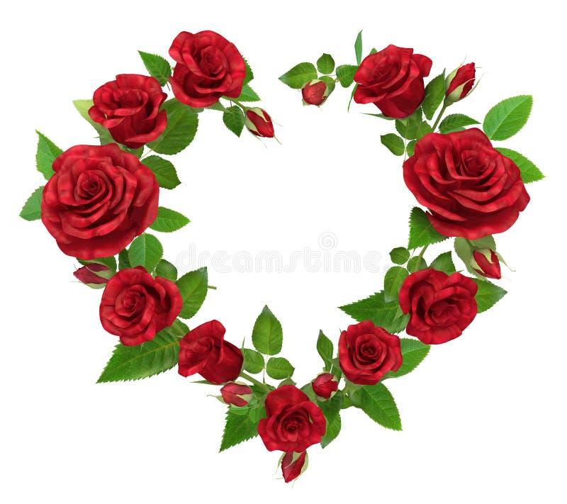 Struttura della rosa rossa sotto forma di cuore su bianco illustrazione di stock