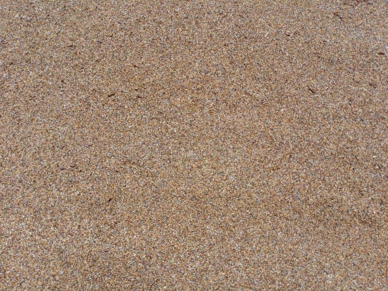Struttura della sabbia dell'oceano fotografie stock libere da diritti