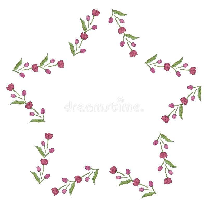 Struttura della stella con i tulipani rosa adorabili su fondo bianco illustrazione di stock