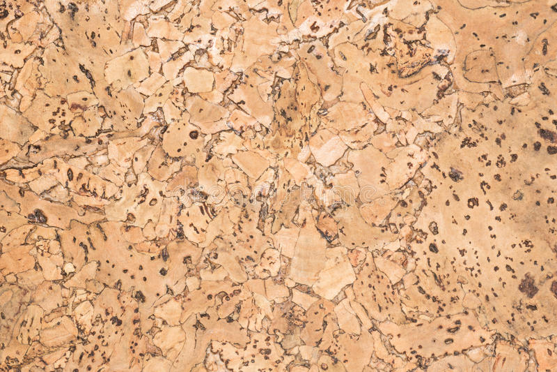 Struttura della superficie di legno del bordo del sughero, pannello decorativo di legno naturale fotografie stock libere da diritti