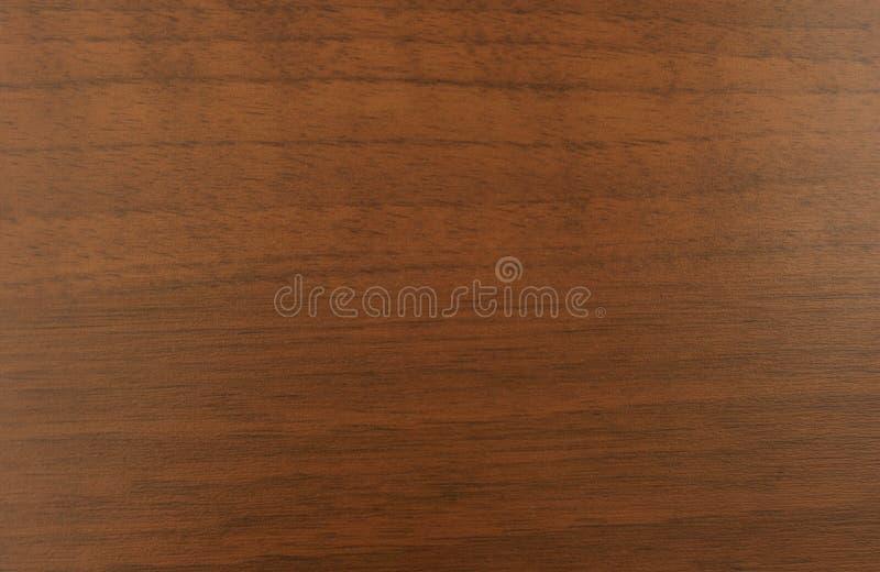 Struttura della venatura del legno della noce immagine stock