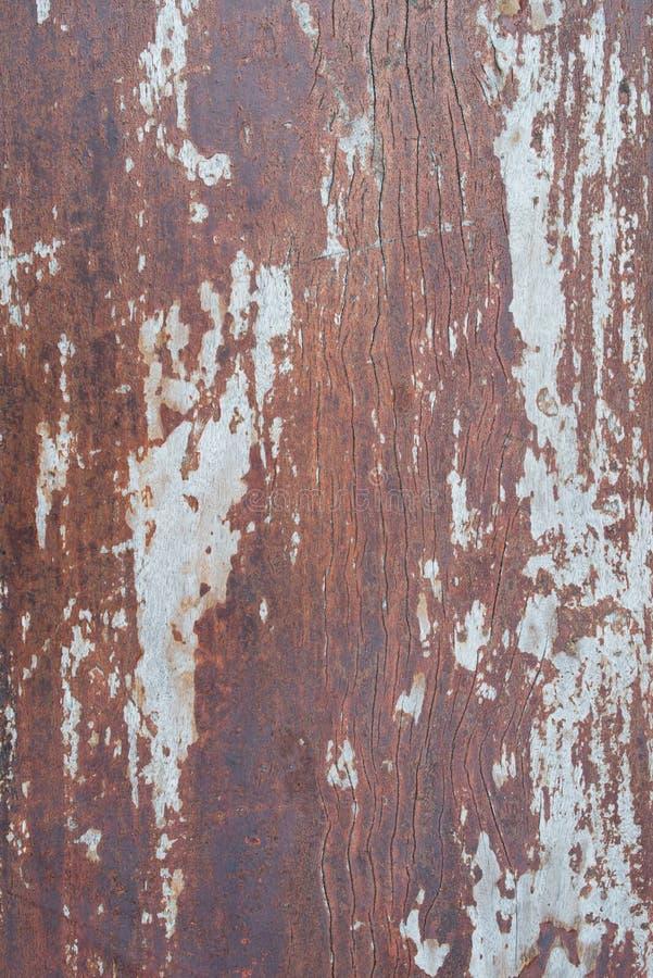 Struttura dettagliata approssimativa d'annata di lerciume di legno fotografia stock libera da diritti