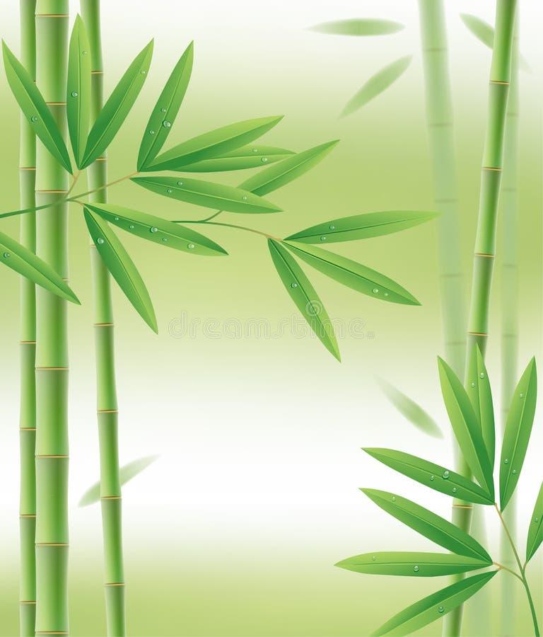 Struttura di bambù verde con i gambi e le foglie su bianco royalty illustrazione gratis