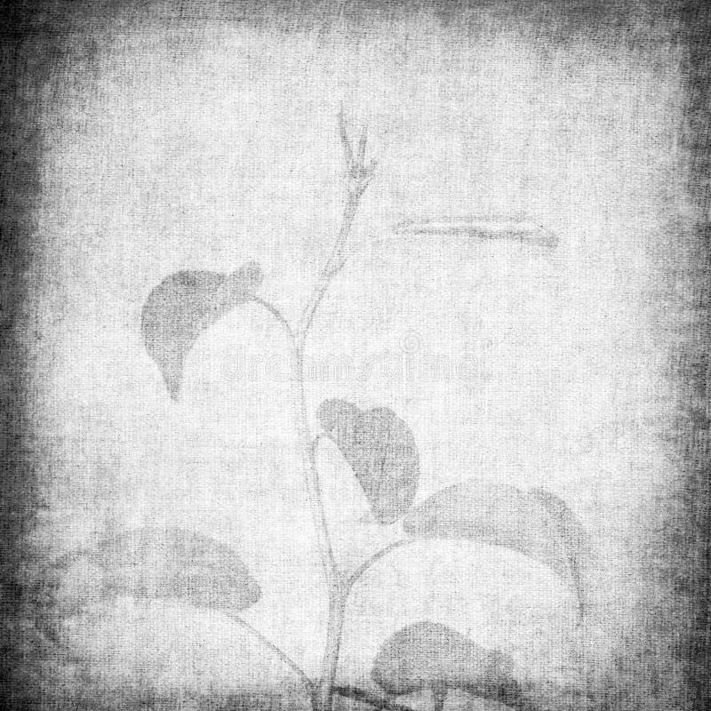 Struttura di carta invecchiata con il disegno floreale royalty illustrazione gratis