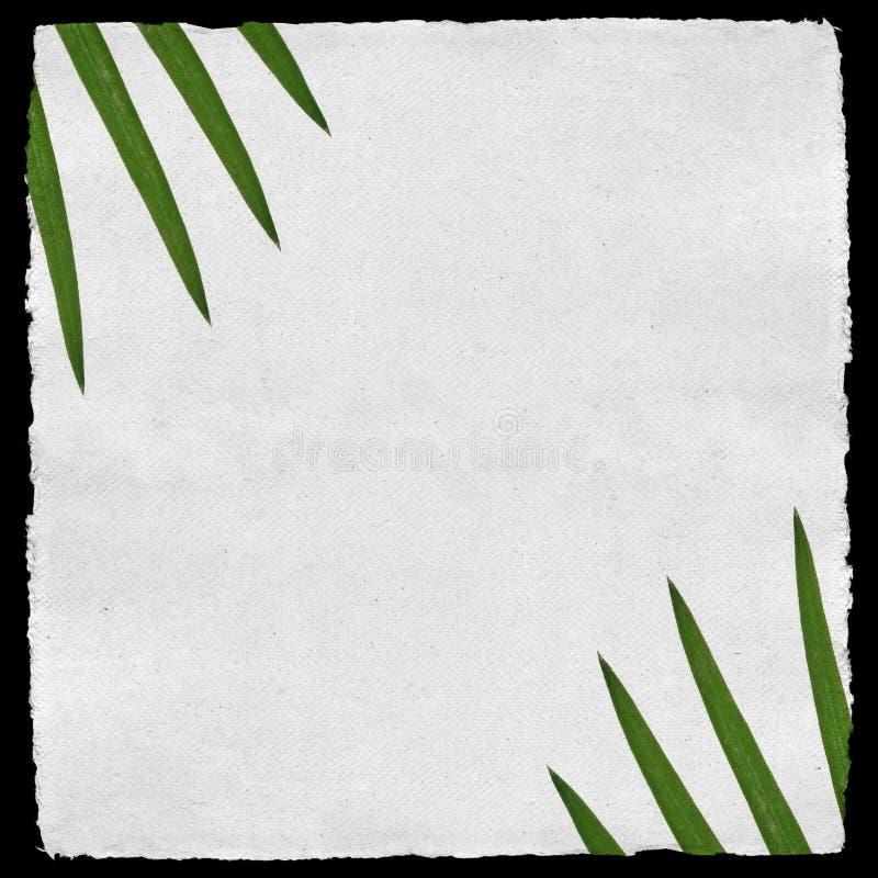 Struttura di carta invecchiata con le foglii di palma illustrazione di stock