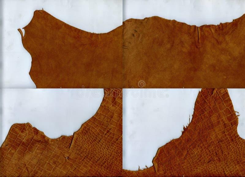 Struttura di cuoio marrone dei bordi irregolari immagine stock libera da diritti