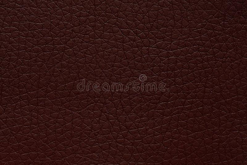 Struttura di cuoio profonda nel colore emozionante Priorità bassa del cuoio di colore marrone scuro immagine stock