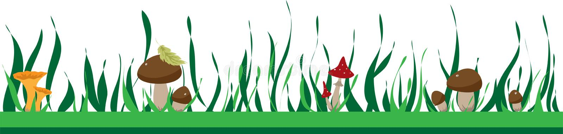 Struttura di estate con i funghi ed erba, autunno o estate illustrazione di stock