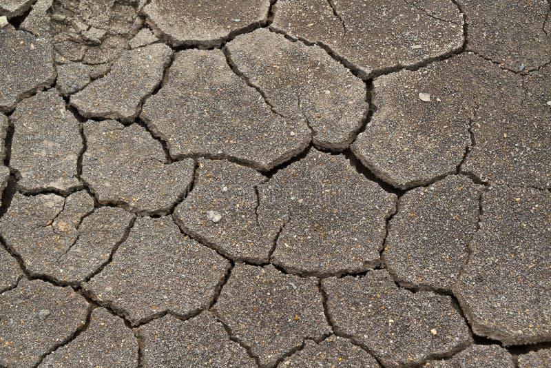 Struttura di fango con le crepe immagini stock