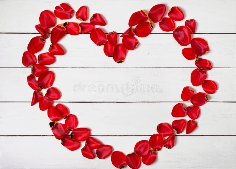 Struttura di forma del cuore dei petali rossi sul fondo di legno bianco della tavola immagini stock libere da diritti