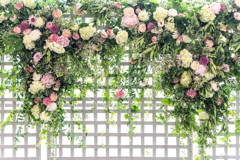 Struttura di grata in un giardino con le viti ed i fiori che creano un pensionante immagine stock