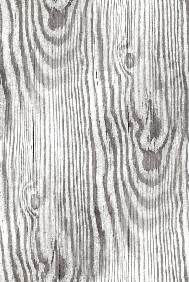 Struttura di legno bianca - fondo senza cuciture royalty illustrazione gratis
