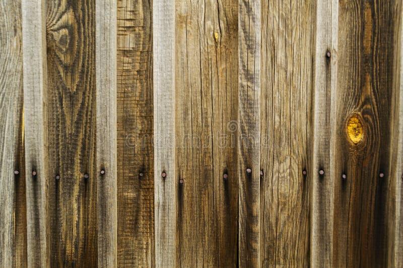 Struttura di legno di Brown di vecchio legno con i nodi, plance fotografie stock libere da diritti