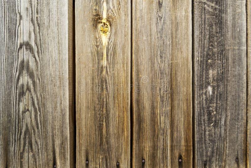 Struttura di legno di Brown di vecchio legno con i nodi, plance immagine stock libera da diritti