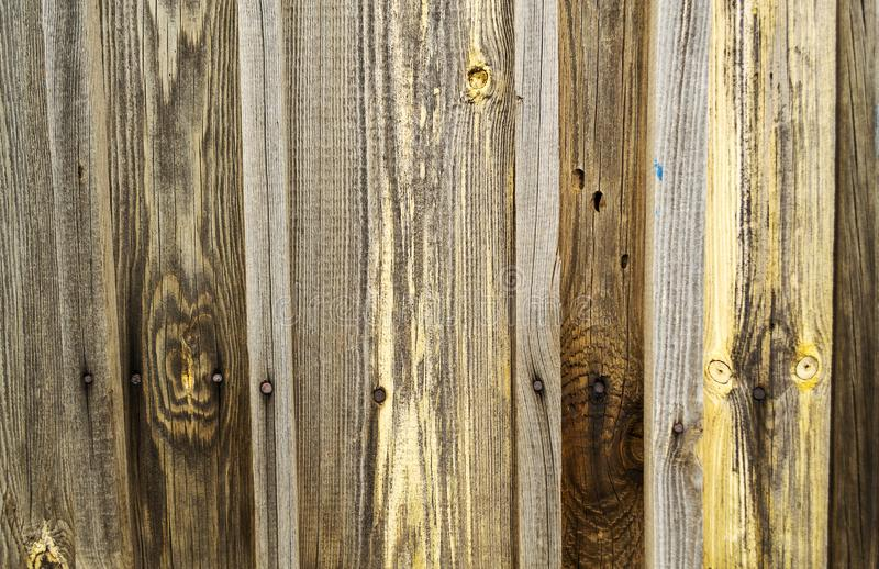 Struttura di legno di Brown di vecchio legno con i nodi, plance immagini stock