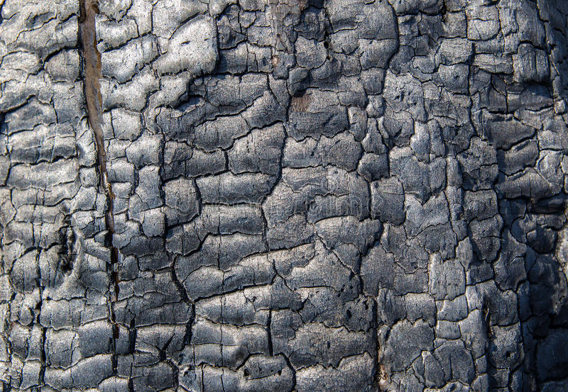 Struttura di legno bruciata fotografia stock libera da diritti