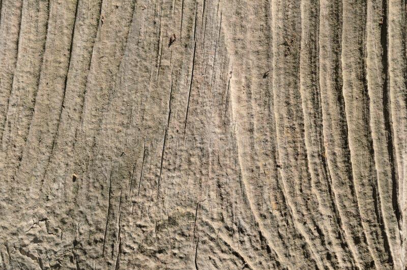 Struttura di legno chiara sottragga la priorità bassa immagini stock libere da diritti