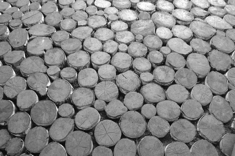 Struttura di legno con i ceppi segati immagine stock