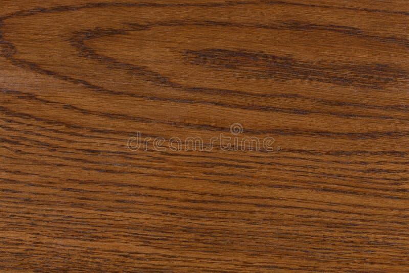 Struttura di legno con i modelli di legno naturali dell'anello fotografie stock libere da diritti