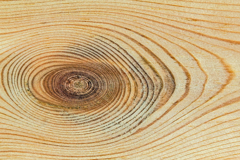 Struttura di legno con il modello naturale immagini stock