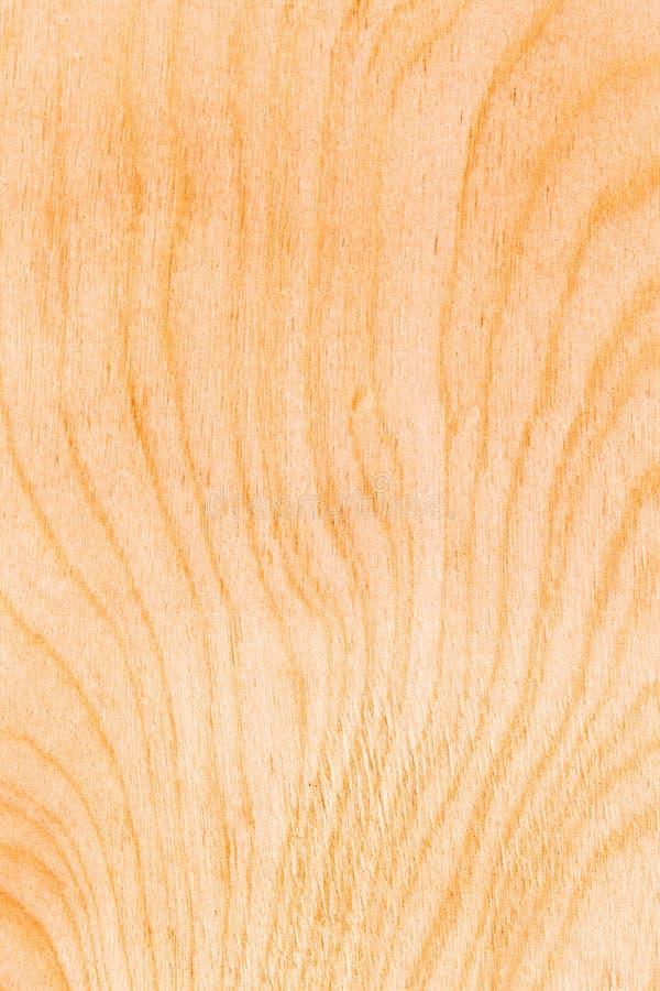 Struttura di legno di legno del fondo fotografia stock libera da diritti