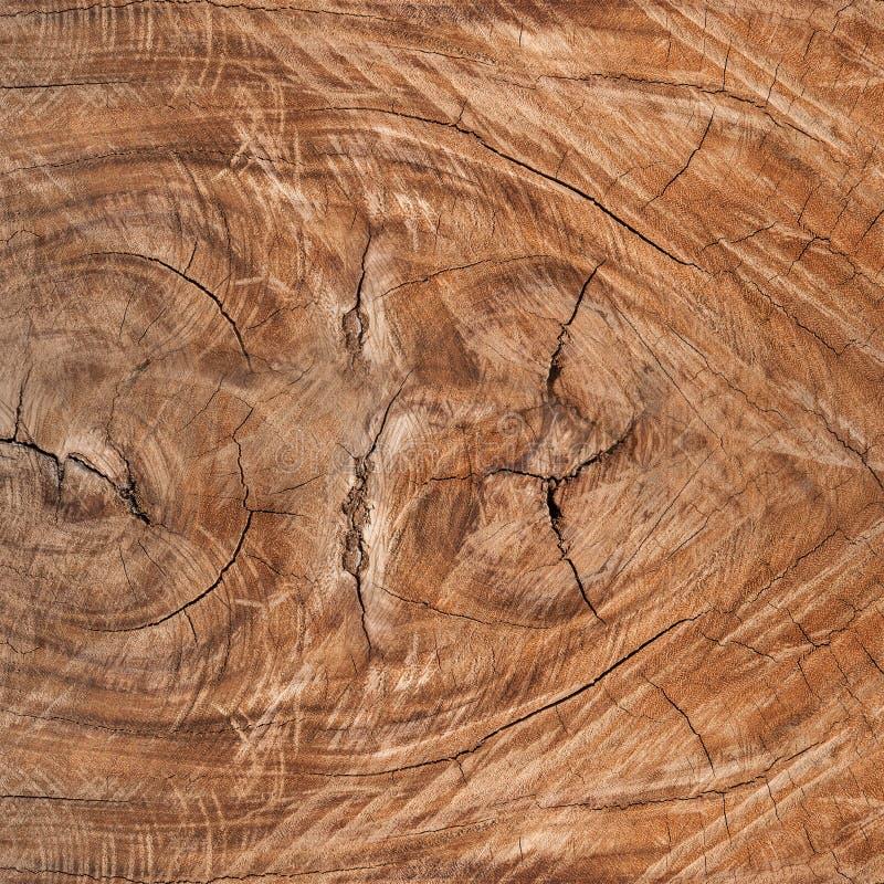 Struttura di legno del fondo immagine stock libera da diritti