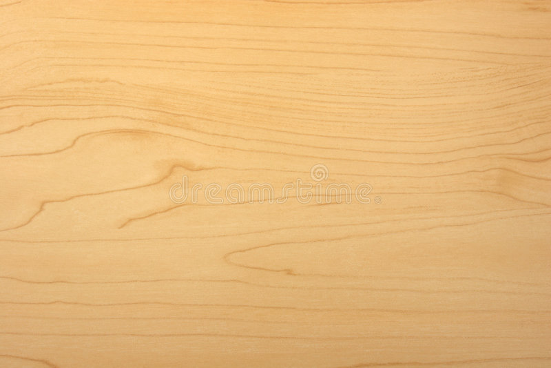 Struttura di legno del granulo dell'acero immagini stock
