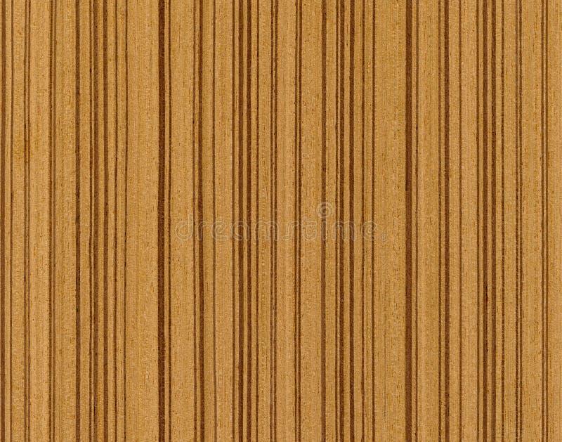 Struttura di legno del tek immagine stock