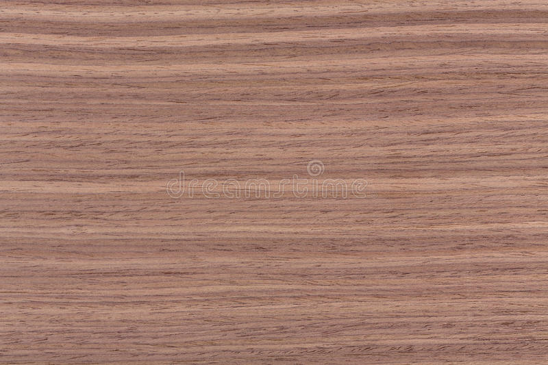 Struttura di legno della noce americana, backghound di legno naturale fotografie stock libere da diritti