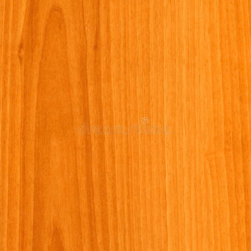 Struttura di legno della noce del primo piano fotografia stock libera da diritti