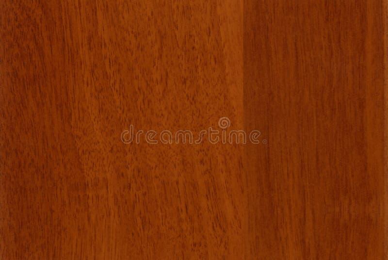 Struttura di legno della noce del primo piano del HQ immagine stock libera da diritti